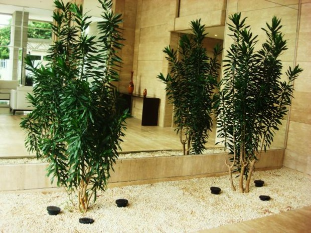 Como Usar Plantas Ornamentais para Interiores 2