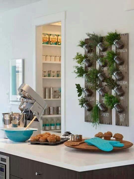 mini horta Enfeites para Cozinha (3)