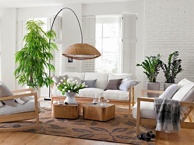 Decoração com plantas naturais – Dicas de profissional (10) dicas de decoração fotos