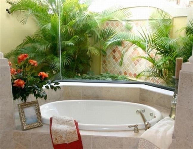 Decoração com plantas naturais – Dicas de profissional (2) dicas de decoração fotos