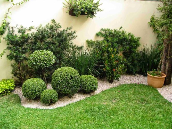 Decoração com plantas naturais – Dicas de profissional (5) dicas de decoração fotos