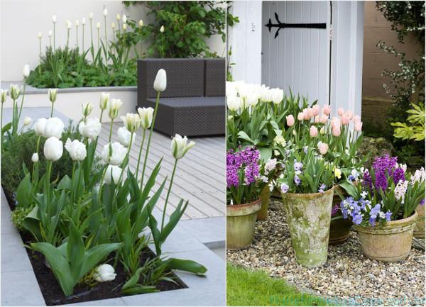 Jardim externo Como decorar -> Como Decorar Um Jardim Pequeno