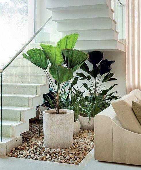 Ideias para montar jardins pequenos Jardim debaixo da escada