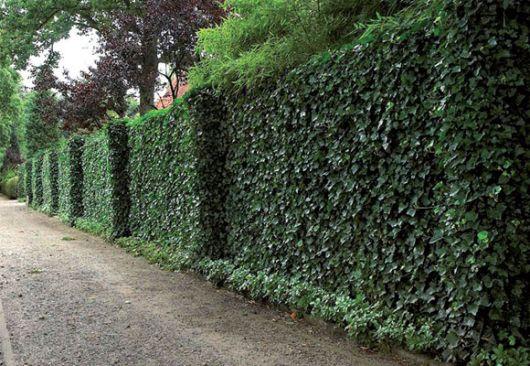 Modelos de muros e fachadas residenciais para você se inspirar! 2