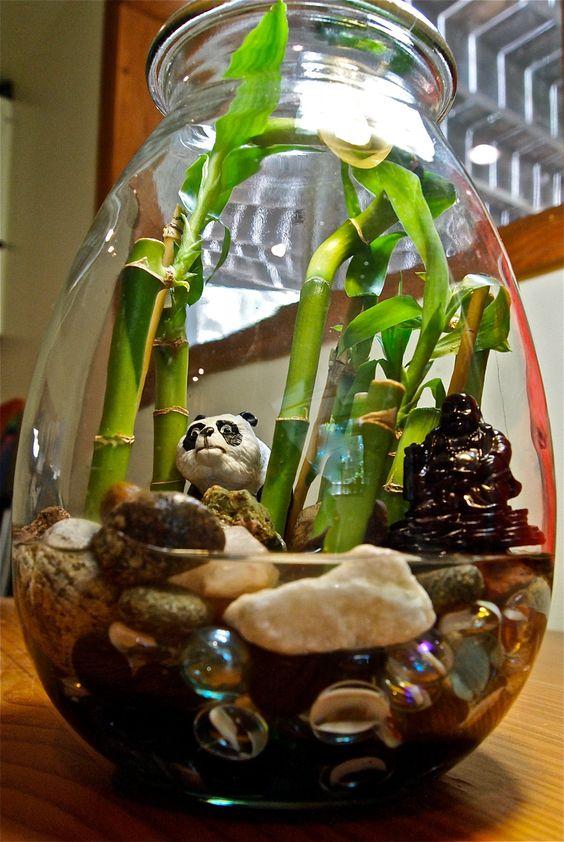 bambu da sorte